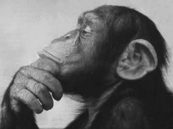 Pensando en nada