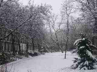 El invierno nos trae el frío. Me encanta la calidez del frío.
